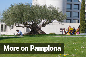 More on Pamplona. University of Navarra for Internationalization