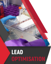Lead Optimisation