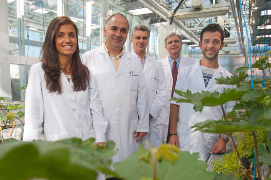 1.5 million euro for foreseeing the effects of climate change on plant nutrition and development