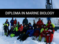 Diploma in Marine Biology