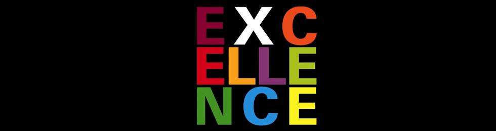 programa excellence universidad de navarra